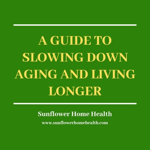 New Years Resolutions to slow down aging & live longer